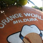 Orange World Mildura – A Review